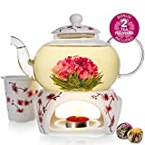 Teabloom Cherry Blossom Teapot & Flowering Tea Gift Set (6 Pieces) - Stovetop Safe Glass Teapot (28oz/800ml), Porcelain Lid, Teapot Warmer, Porcelain Loose Tea Infuser + 2 Gourmet Flowering Teas