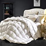 Goose Down Comforter 100% Egyptian Cotton 750+ Fill Power Insert Queen Comforter 1200 Thread Count Pinch Pleat Design Down Proof Duvet Comforter with Corner Tabs for All Seasons, White 90x90Inches