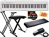 Roland FP-10 Digital Piano Bundle with Adjustable Stand, Bench, Sustain Pedal, Austin Bazaar Instructional DVD, and Polishing Cloth