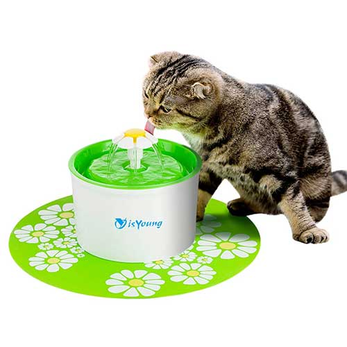 6. isYoung Cat Fountain