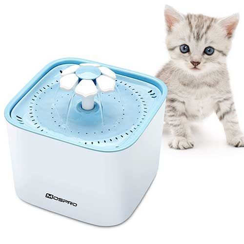 Best Cat Water Fountains 5. MOSPRO Pet Fountain Cat Water Dispenser