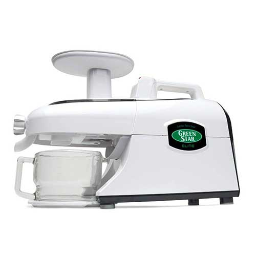 Best Juicers for Greens 9. Tribest Green Star Elite GSE-5000-220V Jumbo Twin Gear Juice Extractor