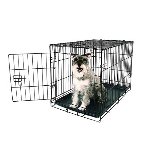 Best Dog Crates for Separation Anxiety 5. Carlson Pet Products SECURE AND FOLDABLE Single Door Metal Dog Crate