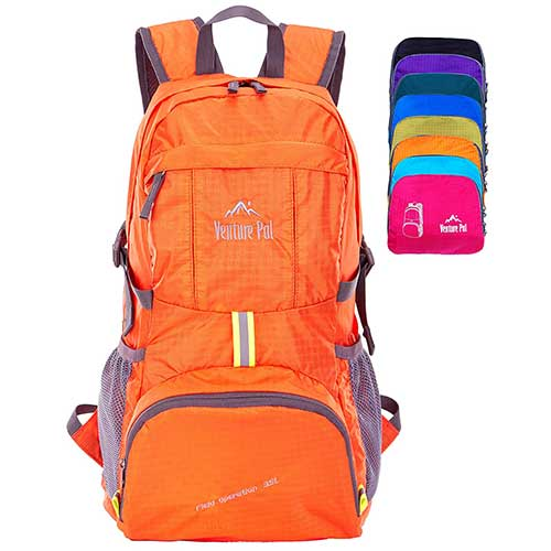 Best Hiking Backpack Under 100 2. Venture Pal Lightweight Packable Durable Travel Hiking Backpack Daypack