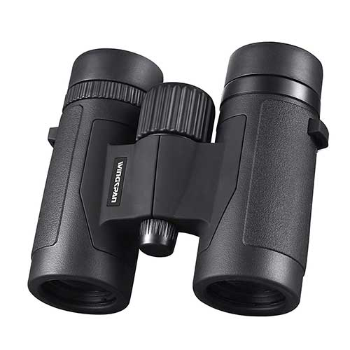 Best Compact Binoculars for Birding 2. Wingspan Optics Spectator 8X32 Compact Binoculars for Bird Watching. Lightweight and Compact for Hours of Bright, Clear Bird Watching. Also for Outdoor Sports Games and Concerts