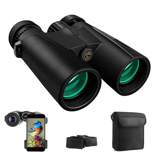 Best Compact Binoculars for Birding 9. Cayzor 12x42 Binoculars for Adults Compact HD Clear Weak Light Vision Bird Watching – Professional for Travel Stargazing Hunting Concerts Sports - BAK4 Prism FMC Lens Phone Mount Strap Carrying Bag