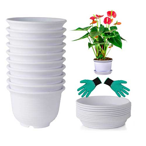 6. DeElf 10 Sets Plastic Flower Pots 6 inch Planters with Drainage and Saucers for Modern Indoor Plants, White Color