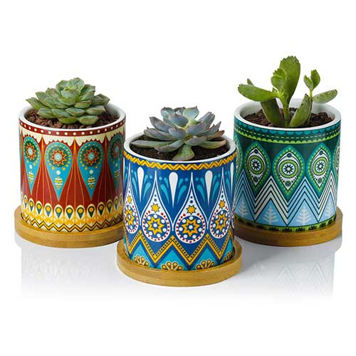 8. Greenaholics Succulent Plant Pots - 3 Inch Mandalas Pattern Cylinder Ceramic Planter for Cactus, with Drainage Hole