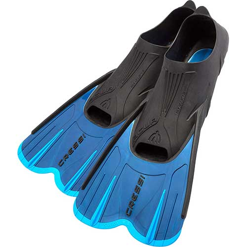 Top 10 Best Swim Fins for Training in 2021 Reviews