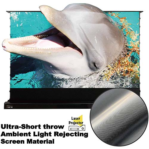 Top 10 Best Motorized Projector Screens in 2021 Reviews