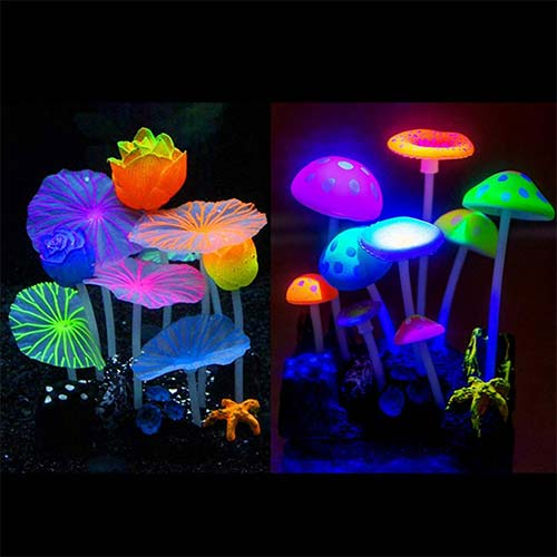 Top 10 Best Fish Tank Accessories for Decorations in 2020 Reviews